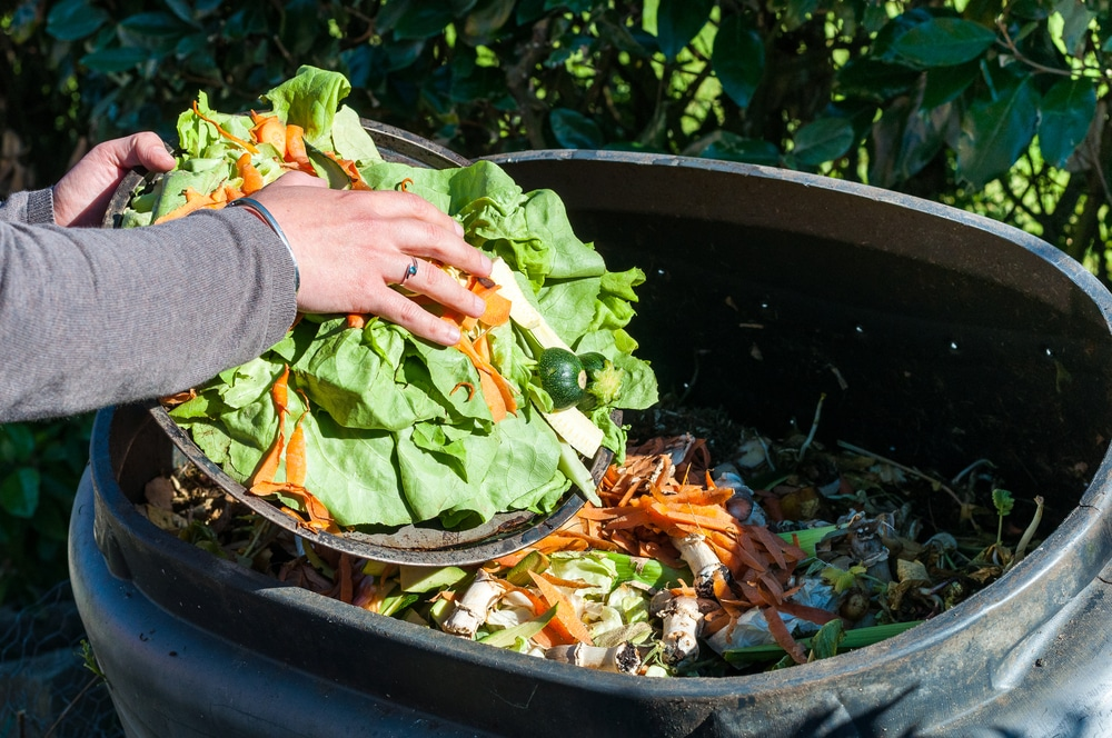 le bac à compost