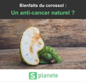 les bienfaits du corossol : anti-cancer