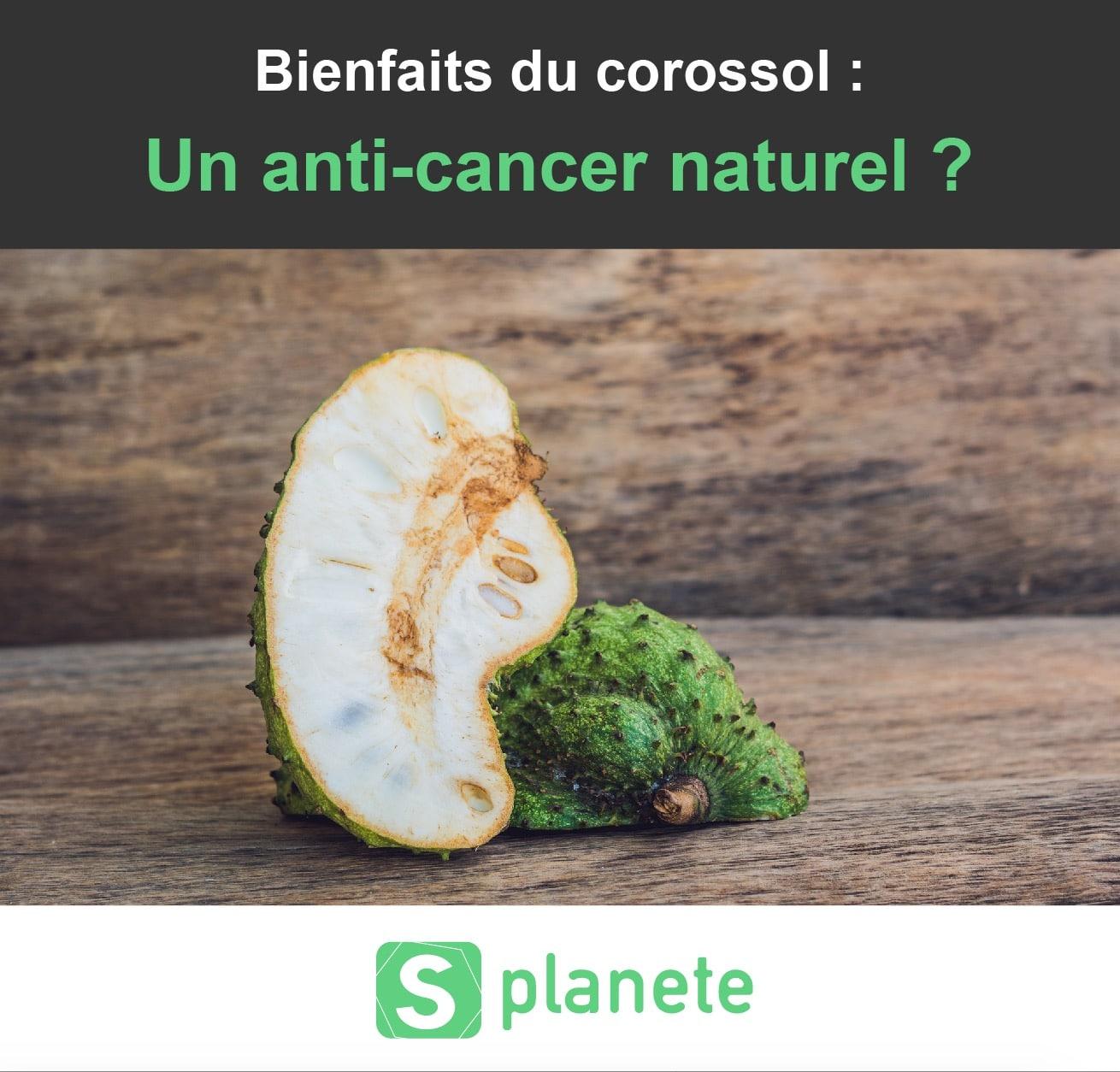 Bienfaits du Corossol : anti-cancer naturel ?