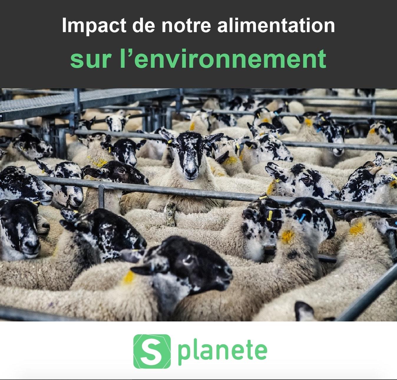 Impact de notre alimentation sur l'environnement