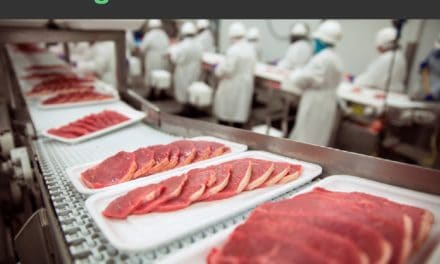 Pourquoi faut-il manger moins de viande ?