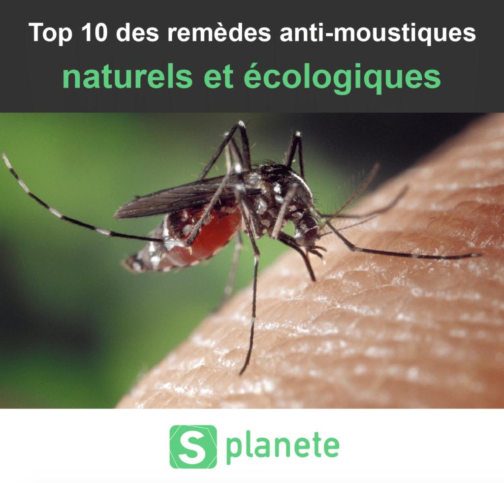 remèdes anti-moustiques naturels et écologiques