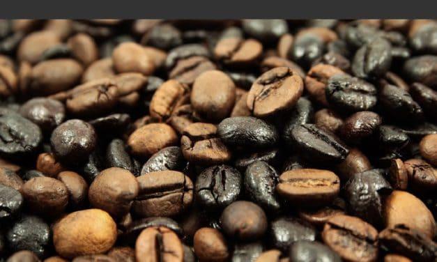 Top 25 des utilisations du Marc de café