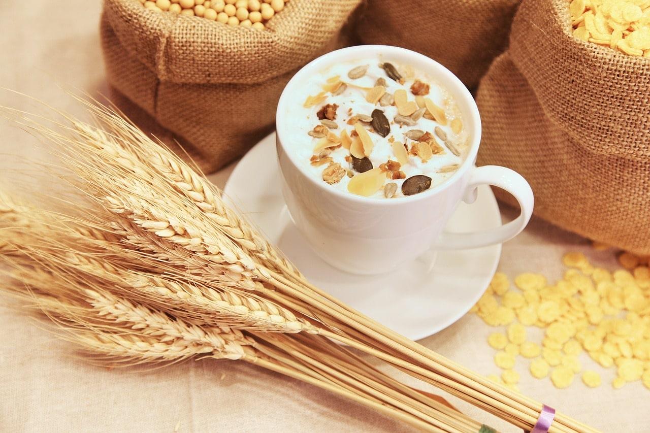les céréales pour végétarien