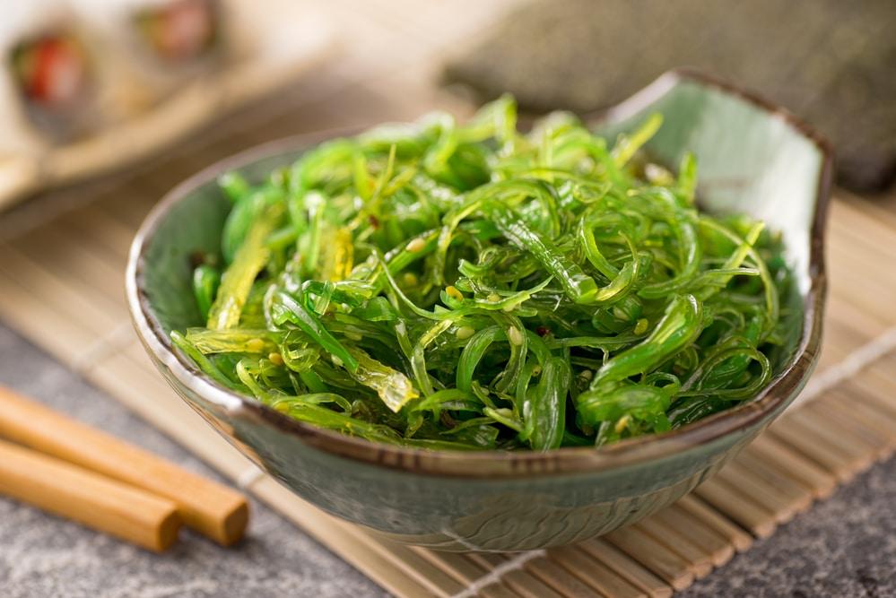 les micro-algues