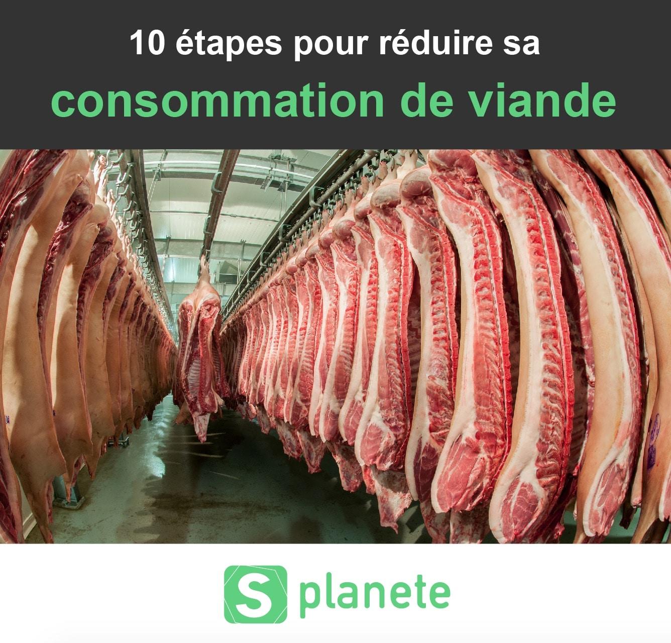 10 étapes pour réduire sa consommation de viande