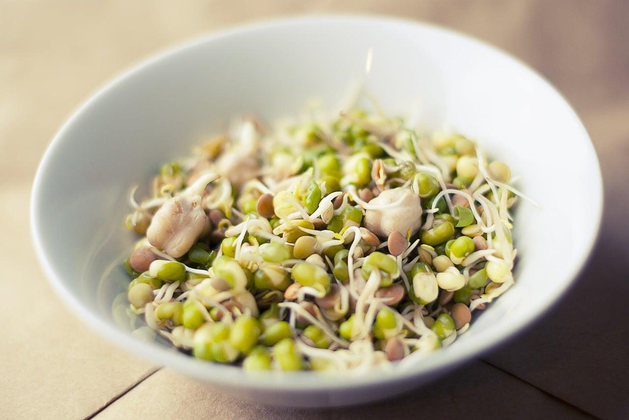 le soja pour remplacer la viande
