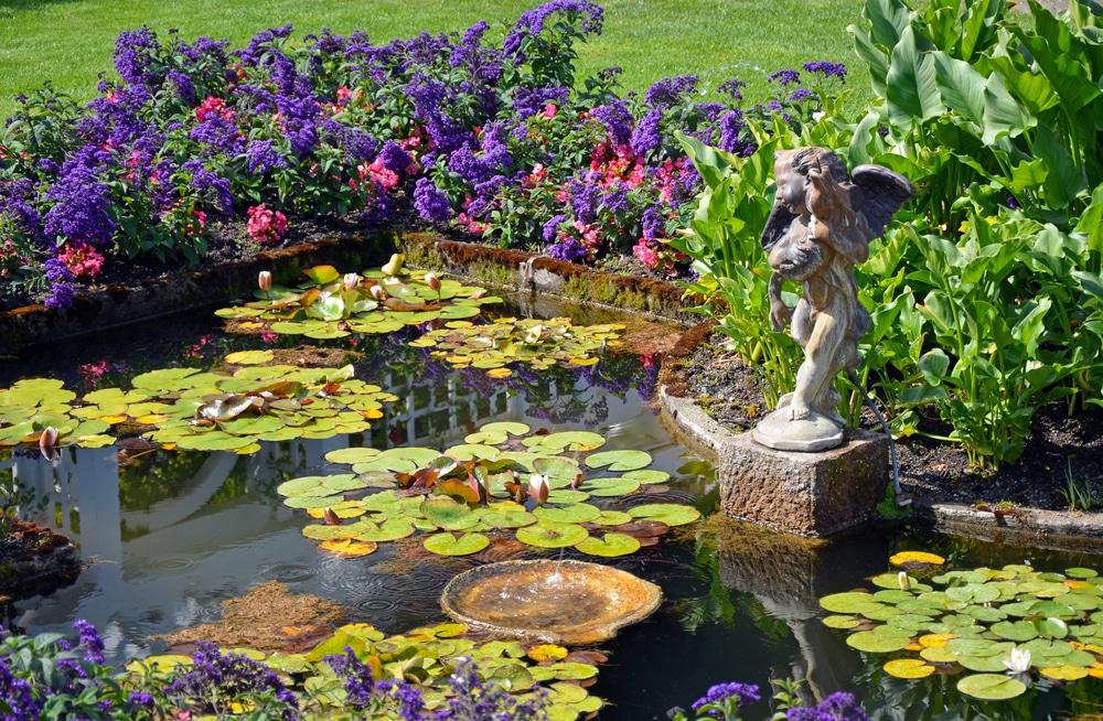 Bassin de jardin : Construire, aménager et entretenir ...