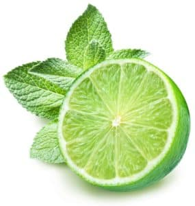 Lime And Mint On A White Background.