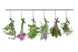 Meilleures herboristeries internet